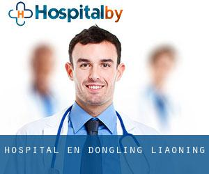 hospital en Dongling (Liaoning)