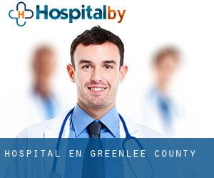 hospital en Greenlee County