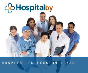 Hospital en Houston (Texas)